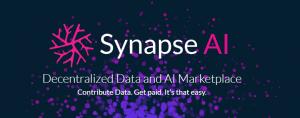 synapse allocation