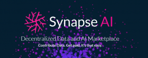 synapse Roadmap